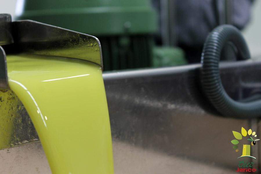 extrayendo-el-aceite