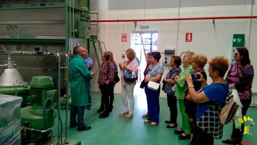 Más de 100 personas visitan la Almazara Óleo Jarico en Mayo