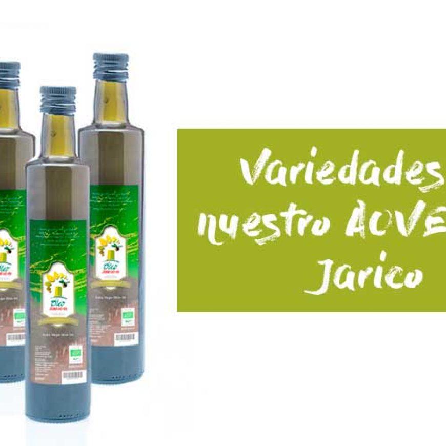 El sabor del AOVE según las variedades de aceitunas