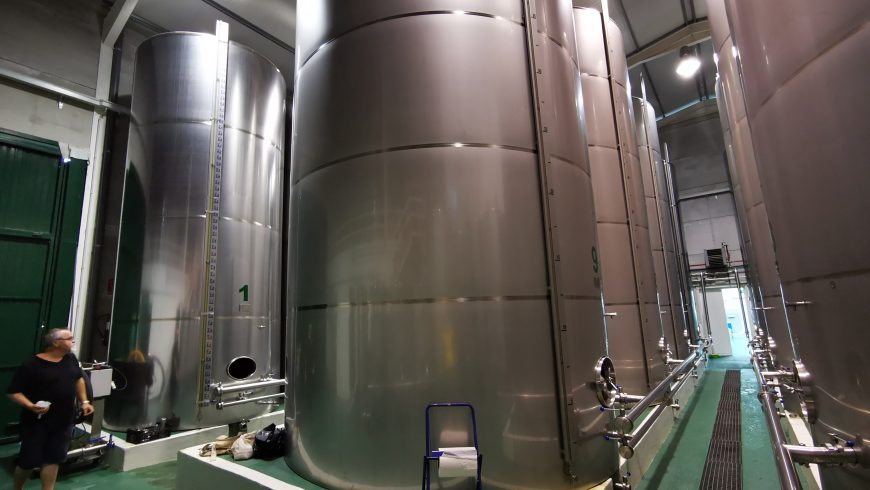 ¿Cómo conservar el aceite de oliva virgen extra en verano?