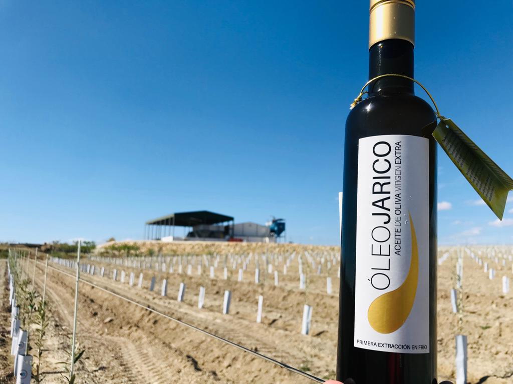 El aceite de oliva virgen extra premium: las características que lo convierten en un producto único