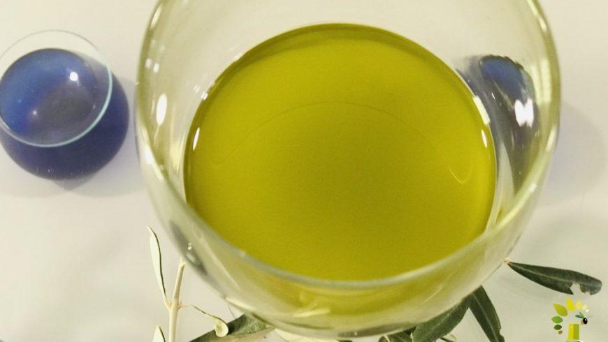El Aceite de Oliva Virgen Extra, el súperalimento por excelencia y sin rival